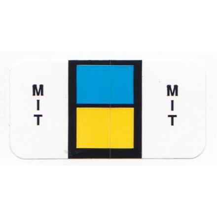 CSM MIT